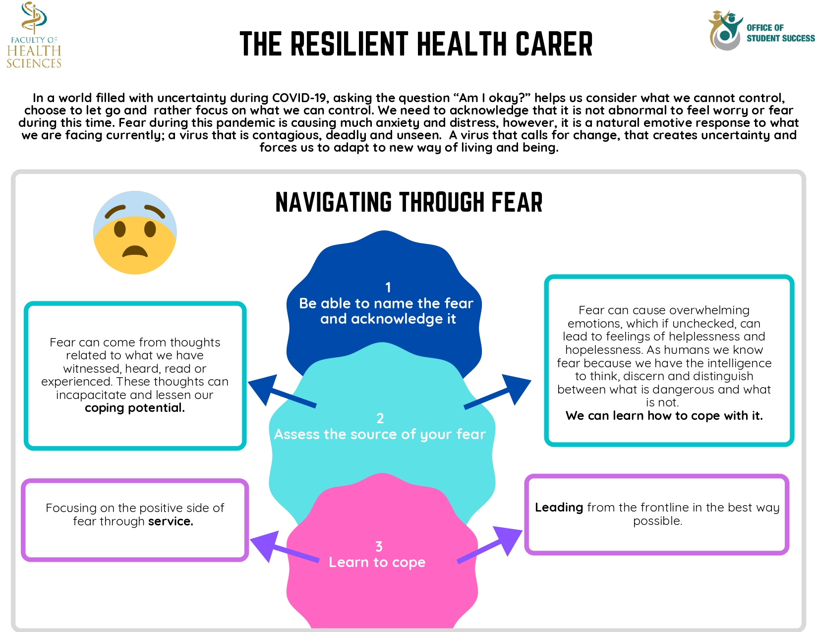 Wits FHS The Resilient Health Carer